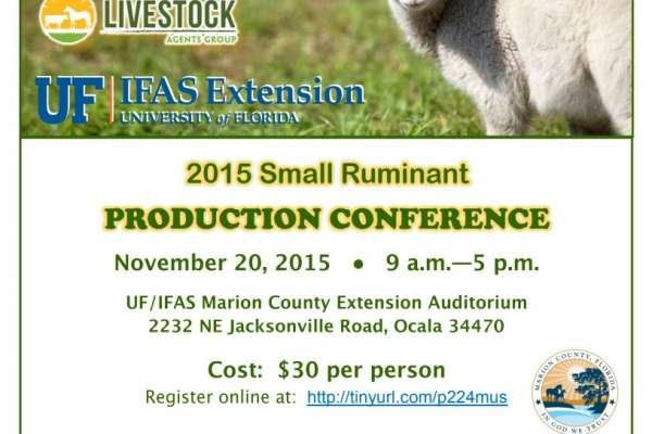 2015 Small Ruminant animals conference