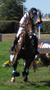 Rider on brown horse
